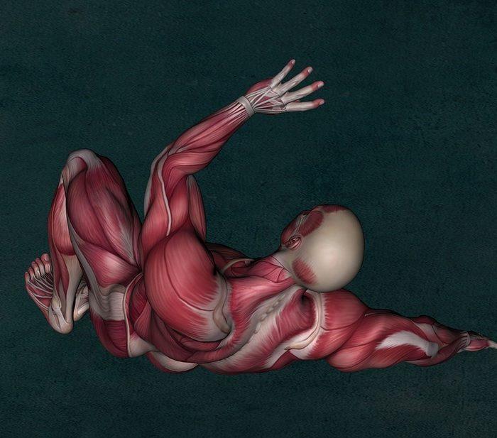 Desarrollaron un material equivalente al músculo humano
