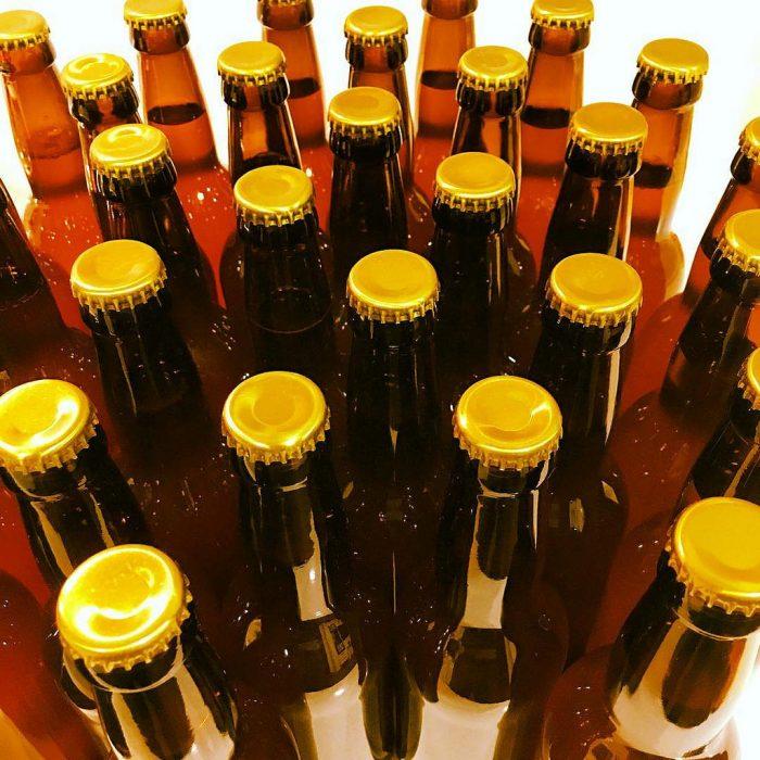 Agroindustria impulsa el clúster de la cerveza artesanal en Chubut y Río Negro