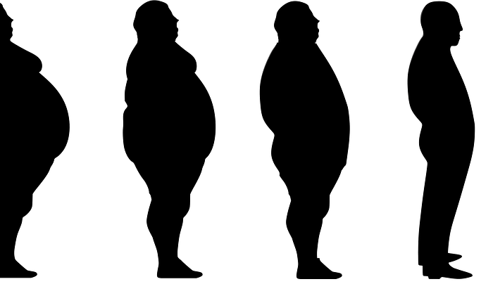 Una proteína podría reducir la obesidad