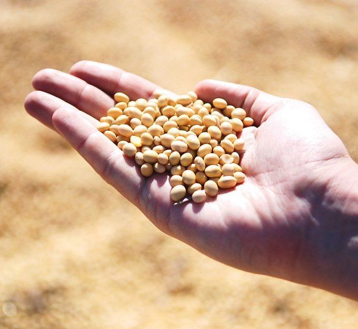 Crecen los préstamos agroindustriales en la provincia de Buenos Aires