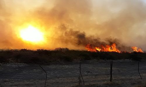 Claves para prevenir incendios en los campos