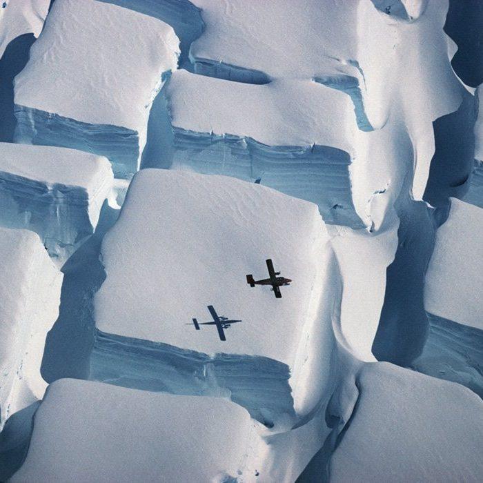 Las mejores fotos científicas del año, según Royal Society