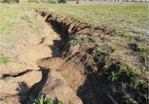 Argentina pierde US$ 30 M al año por erosión hídrica