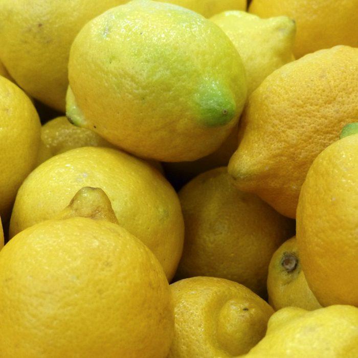 Evalúan al complejo citrícola de limón como el sector más competitivo de la economía argentina