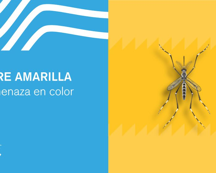 Fiebre amarilla: la amenaza en color