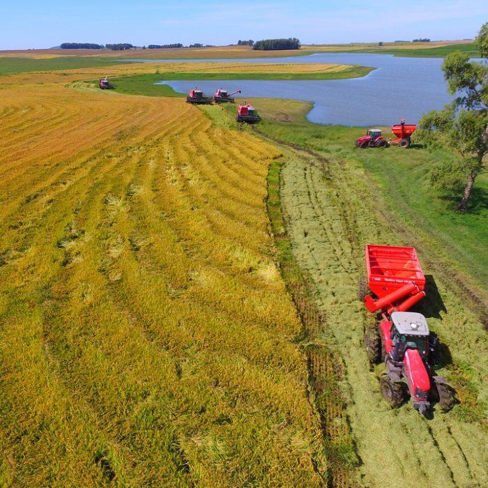 Inversión en el seguimiento satelital de cultivos