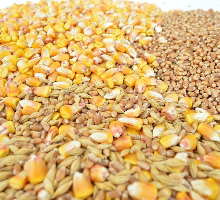 ¿Quiénes fueron los principales exportadores argentinos de granos y subproductos y a donde fue la mercadería en 2017?