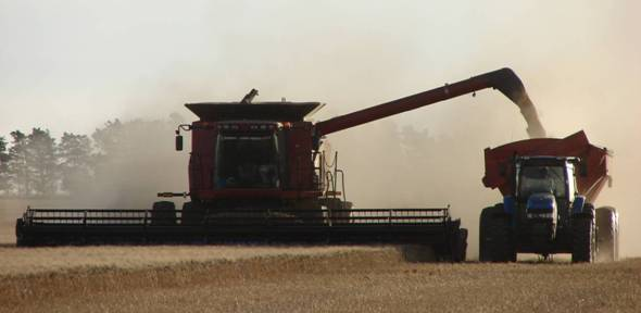 Informe especial: Cosechadoras de granos – Parte I