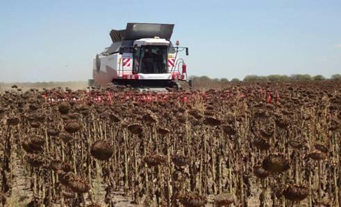 Informe especial: Cosechadoras de granos – Parte II