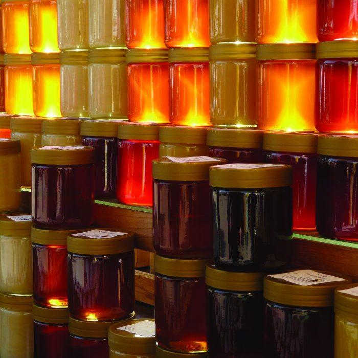 Se renueva la campaña federal para promover la apicultura y el consumo de miel