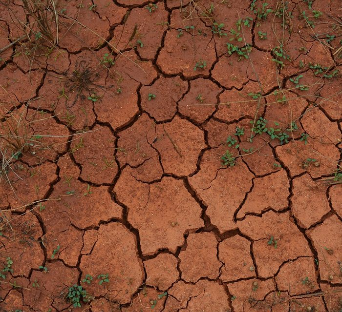Índice FADA: siguen las repercusiones de la sequía – Parte I
