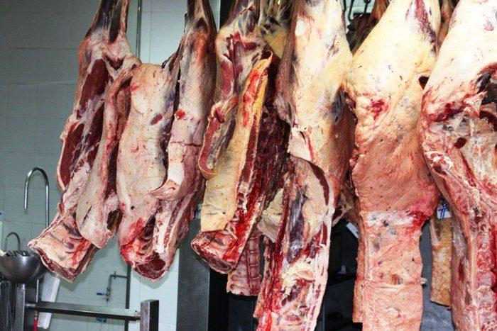 """Libro: """"El ADN de la carne argentina"""""""