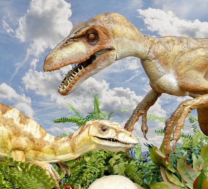 Descubren en San Juan un dinosaurio gigante de más de 200 millones de años