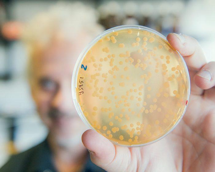 Una proteína que promueve su propio apagado y rompe con el esquema de regulación clásico