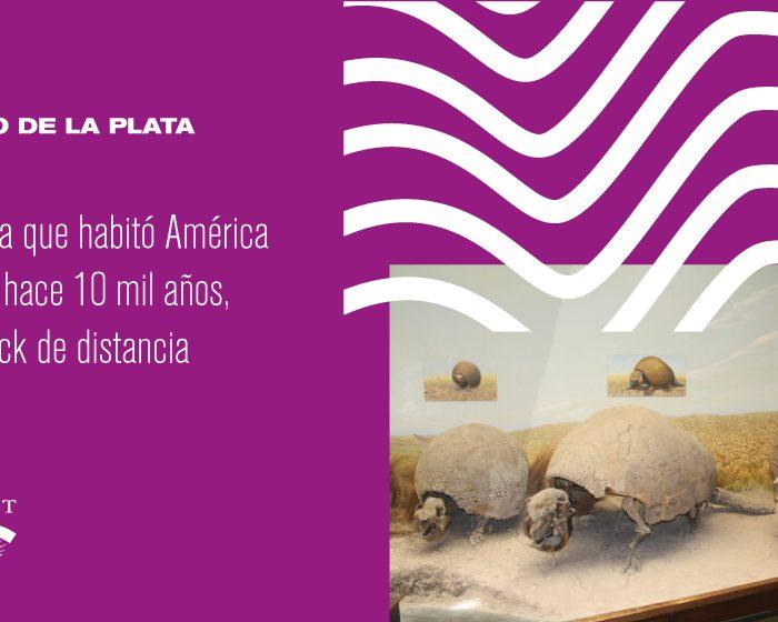 La fauna que habitó América del Sur hace 10 mil años, a un click de distancia