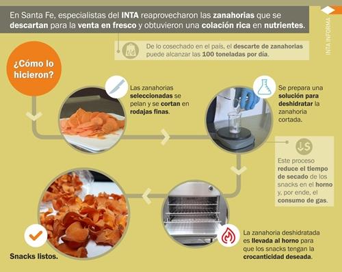 El descarte productivo de zanahoria se convierte en snacks saludables – Parte II