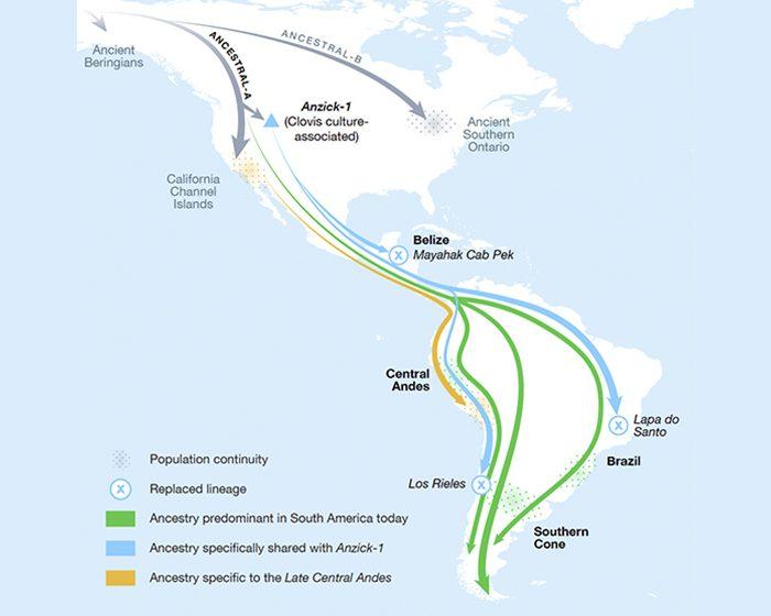 Descubrimiento sobre ADN antiguo