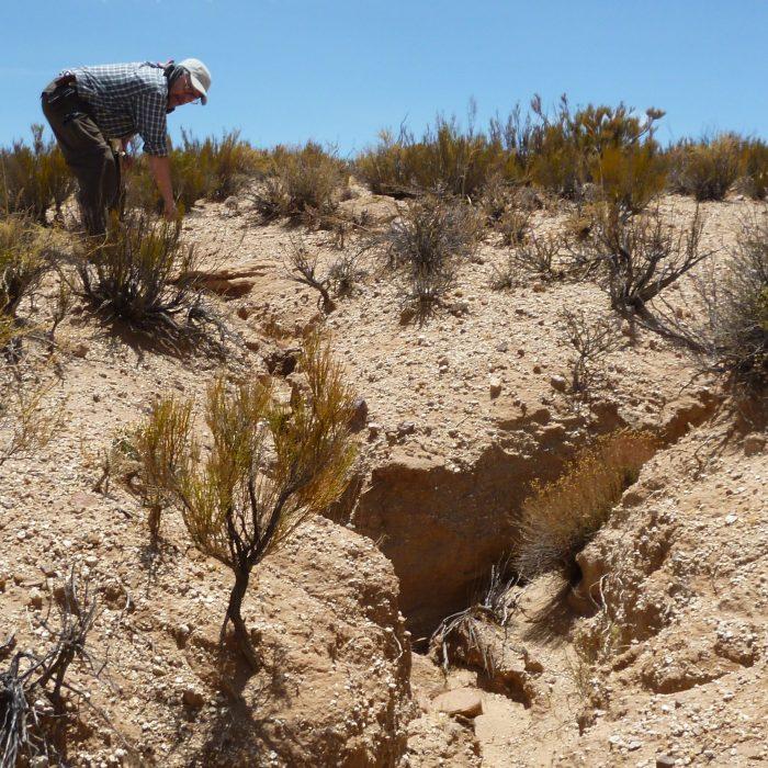 El cambio climático amenaza a las regiones secas