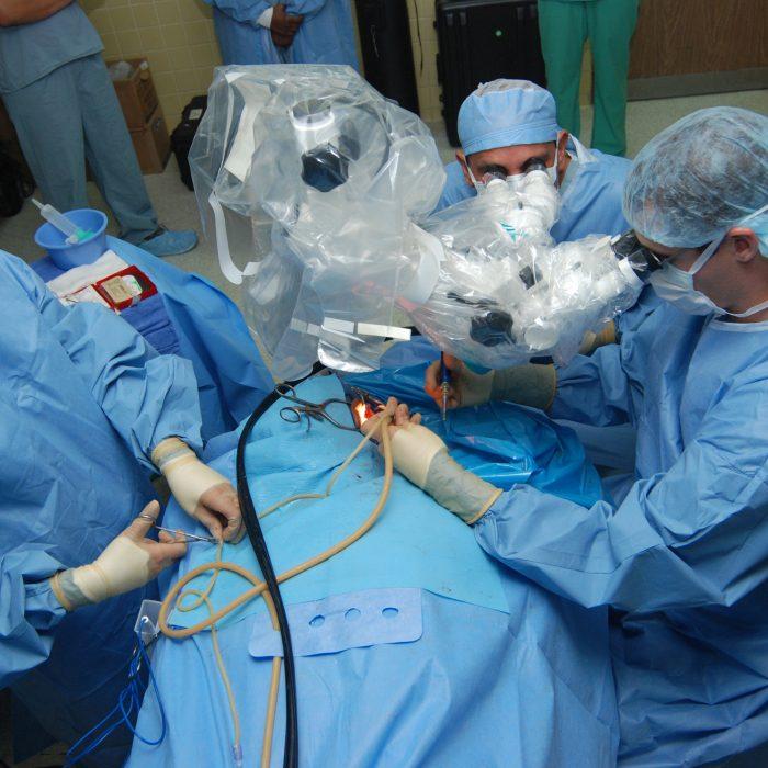 Argentina avanza la investigación para generar nuevos modelos de prótesis quirúrgicas