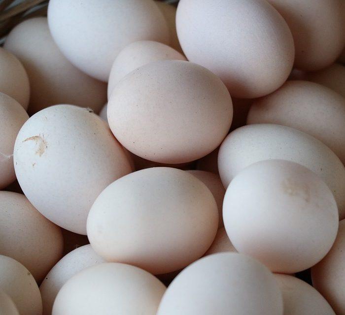 La avícola ratifica que el huevo es un alimento seguro