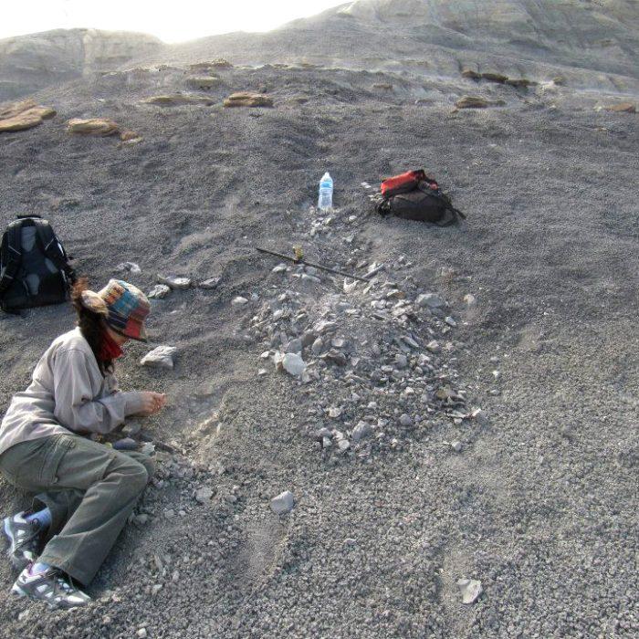Científica platense que revela los secretos de las rocas en busca del petróleoÓLEO