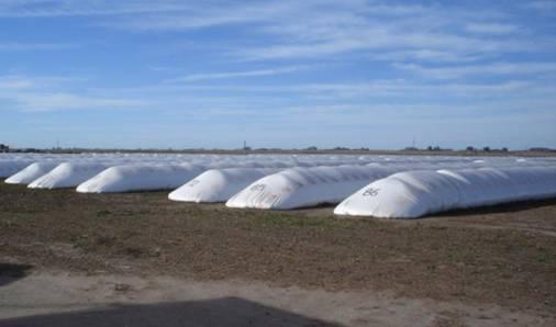 Poscosecha de granos: guía para almacenamiento de granos en silobolsa – PARTE I