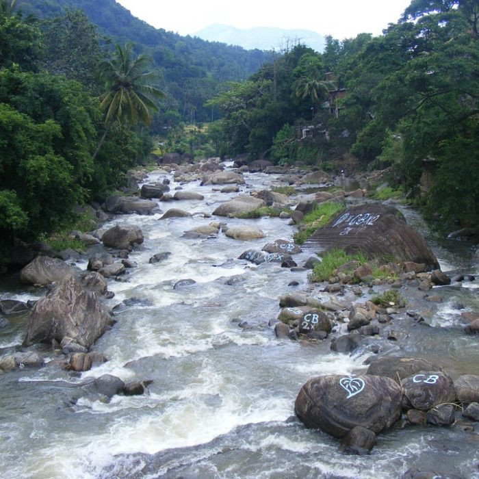 Casi dos tercios de los mayores ríos del mundo están obstaculizados por represas