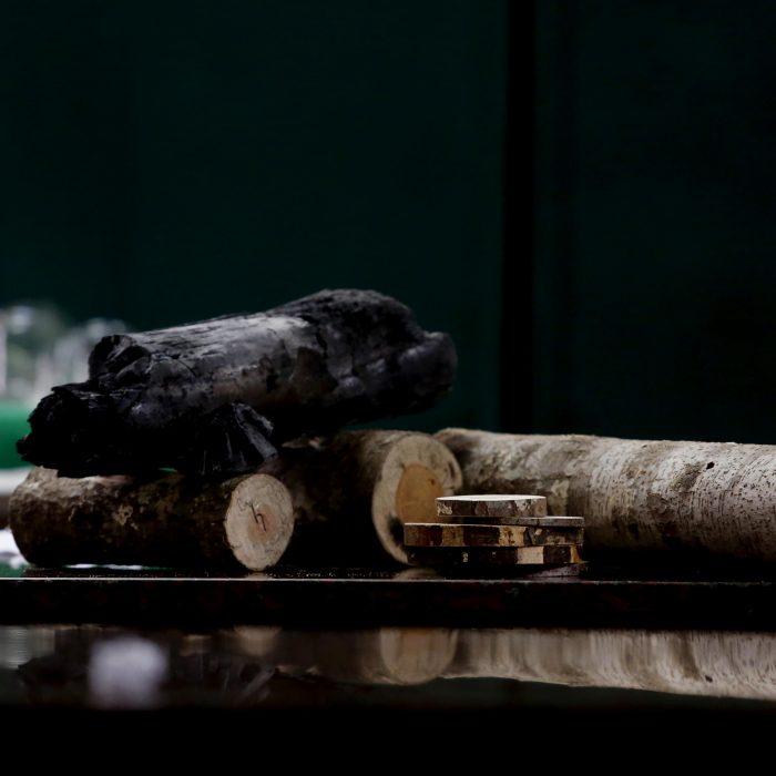 Energías renovables: Proyecto para convertir desechos de acacia negra en carbón