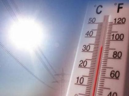 Calentamiento global, el 2019 acumula records de temperaturas