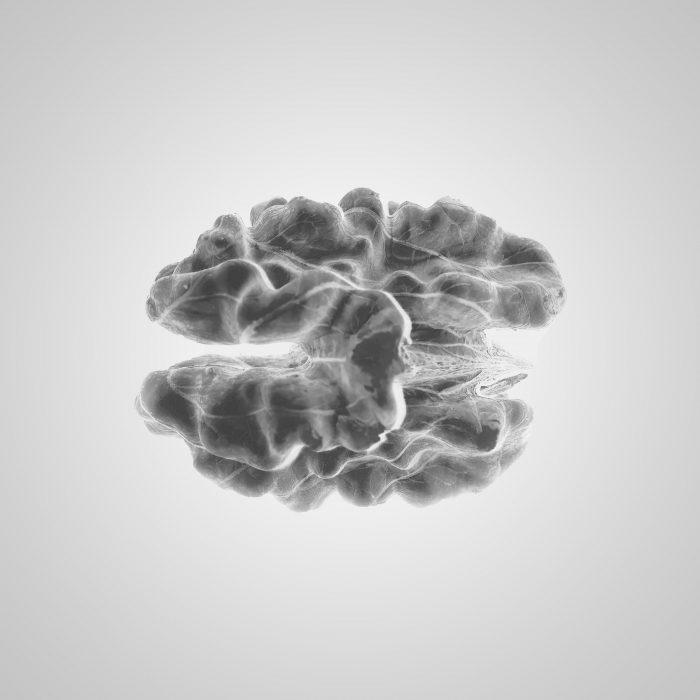 ¿Cómo tratar una lesión cerebral?