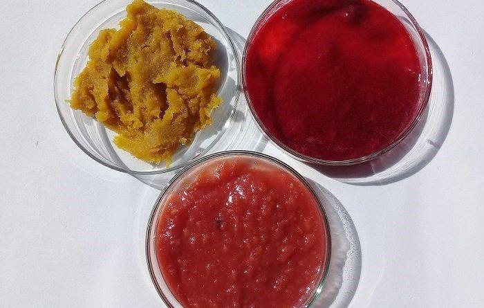 Avanza el desarrollo de un dulce de batata enriquecido con antioxidantes