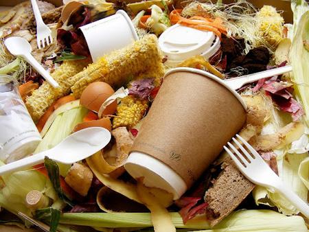 """""""Los desperdicios de alimentos son perjudiciales para el medio ambiente"""""""