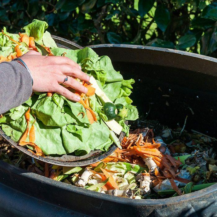"""""""El desperdicio de alimentos es un tercio de lo que se produce en el mundo"""""""