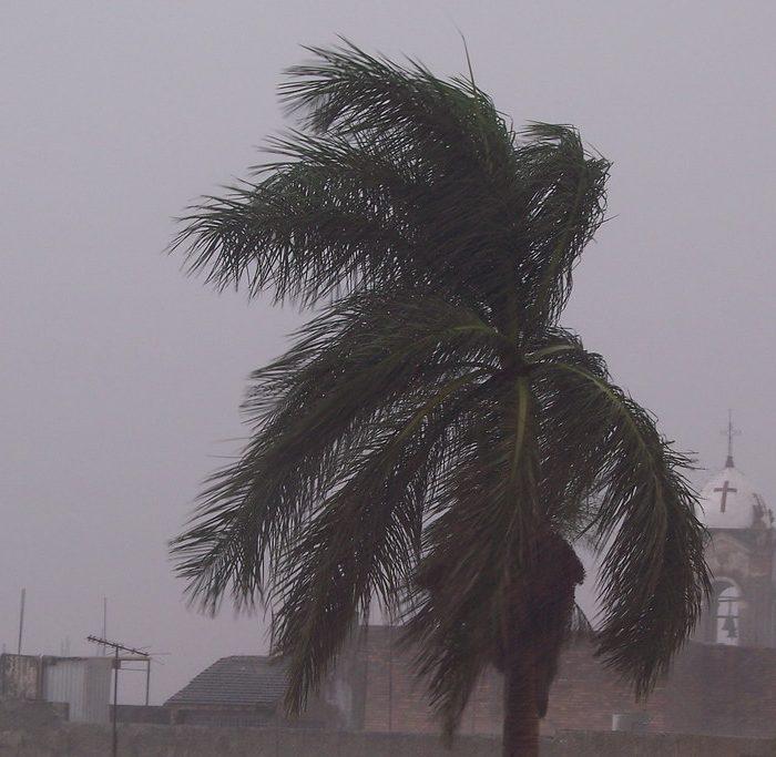 La velocidad del viento en algunas regiones de la Tierra aumentó un 7% en la última década