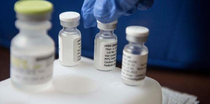 Científicos japoneses realizarán ensayo de vacunación contra el ébola