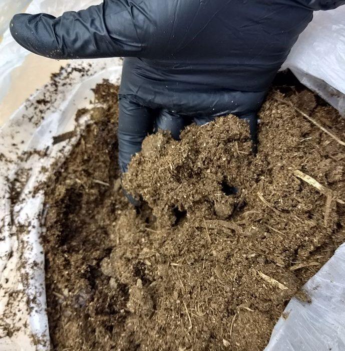 Mediante abonos orgánicos, buscan remediar suelos contaminados con insecticidas