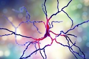 Parkinson: Medicamento en experimentación disminuye movimientos involuntarios
