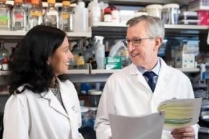 Cáncer: científicos descubren el origen de la metástasis