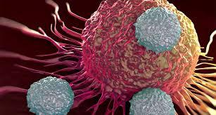 Sólo se registra cada año entre el 9 y el 13% de los casos de cáncer
