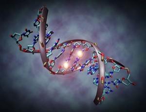 El cáncer y las pruebas genómicas ¿la medicina del futuro?