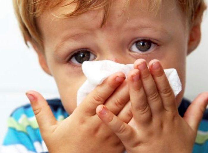 Una vacuna contra la gripe protege contra 6 tipos de virus diferentes en ratones