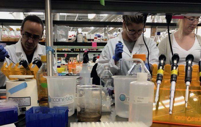 Científicos argentinos crearon un kit portátil y de bajo costo para diagnosticar coronavirus