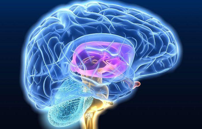 Los nuevos biomarcadores en enfermedades neurodegenerativas permitirán un diagnóstico precoz