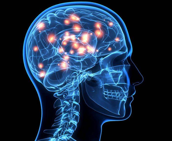 Investigadores argentinas identificaron una hormona que creen que acelera los tumores cerebrales