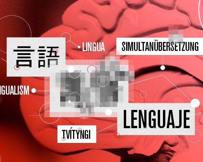 ¿Qué son las neurociencias del lenguaje?