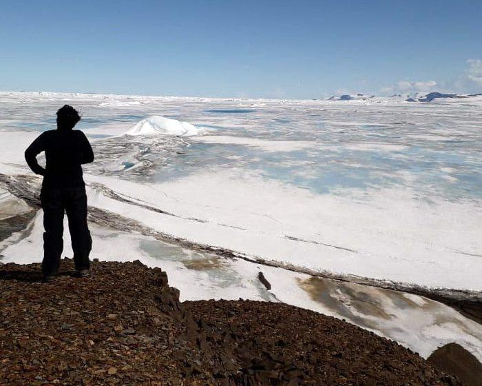 Antártida: historias de una tierra reservada para la paz y la ciencia