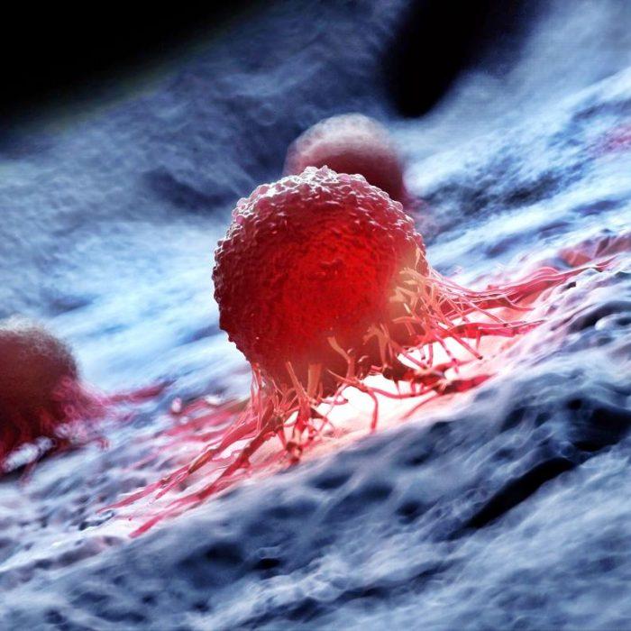 Un estudio internacional analizó el genoma de 2.700 tumores para nuevas terapias contra el cáncer