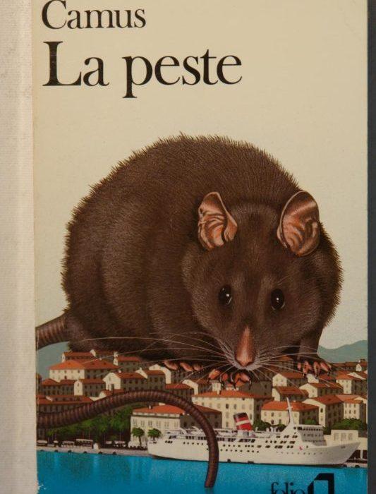 Literatura y miedo: por qué en tiempos de encierro el público busca explicaciones en los libros