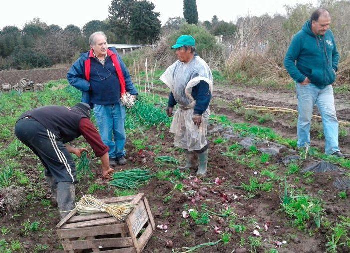 La pandemia impulsa cambios en la horticultura