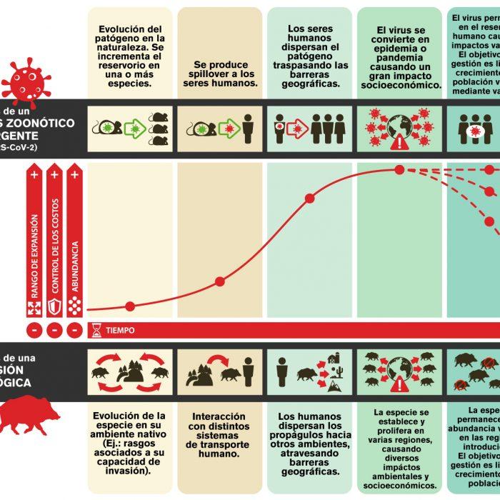 La ciencia de invasiones y el Coronavirus SARS-CoV-2